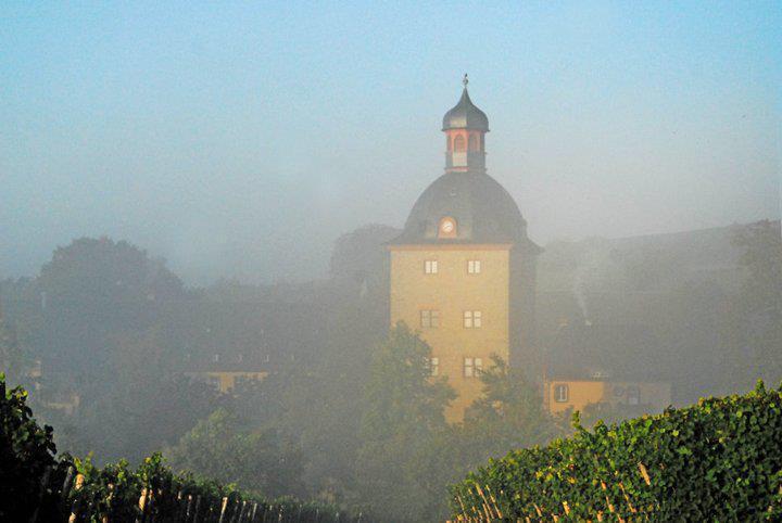 Hochzeitsfotografin auf Schloss Vollrads